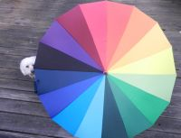 Regenschirm_Regenbogen_Fibi